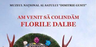 florile dalbe - muzeul dimitrei gusti