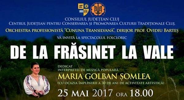 Spectacol - De la Frasinet la vale - Music Artist