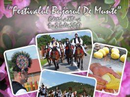 """Festivalul National """"Bujorul de Munte"""""""