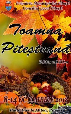 """Targul """"Toamna Pitesteana"""" 2018"""