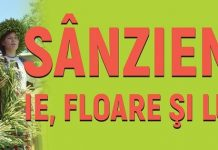 Sanziene- ie, floare si lumina - Muzeul National Dimitrie Gusti