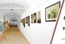 Scoala de Arta Timisoara